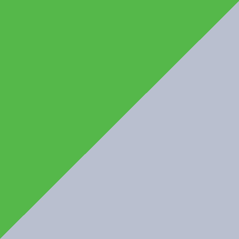 Green With Silver Trim